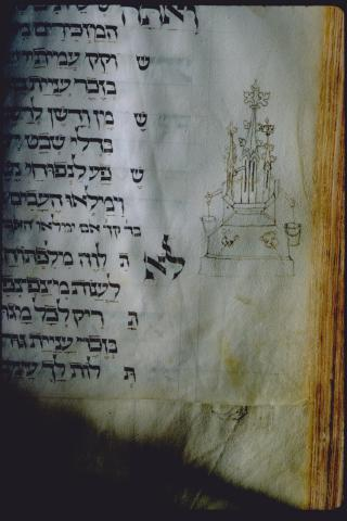 Zodiac Sign of Shevat
